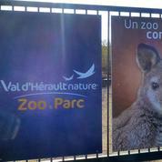 Des cadavres d'animaux congelés découverts dans un zoo près de Béziers