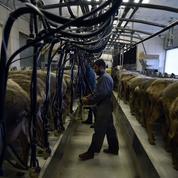 Lait, viande… Bruxelles enquête sur des accords sur les prix