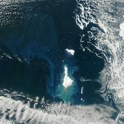 Les icebergs favorisent la capture du CO2