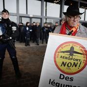 Notre-Dame-des-Landes: expulsion sous haute tension