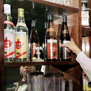 Havana Club: Washington ranime la guerre entre Bacardi et Pernod Ricard