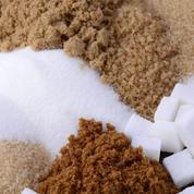 Après le blé et le maïs, le sucre aura peut-être bientôt son propre marché à terme