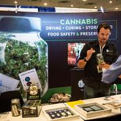 Le cannabis, un marché légal de plus de 5 milliards de dollars aux USA