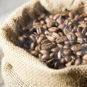 Les cours du café au plus bas depuis deux ans