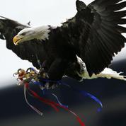 Un fan jugé pour avoir tenté de frapper l'aigle mascotte de Crystal Palace