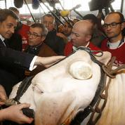 Nicolas Sarkozy peut-il tirer profit de la crise des agriculteurs ?