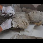 Pompéi révèle de nouveaux secrets 2000 ans après l'éruption