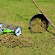 Gazon: offrez-lui un bon nettoyage de printemps