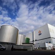 Crise à EDF : l'action chute après la démission du directeur financier