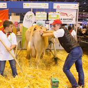 Crise de l'agriculture : «Arrêtez d'emmerder les paysans !»