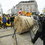 Agriculture: la France fait passer ses mesures sur le lait à Bruxelles