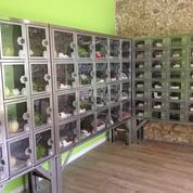 Oui, on trouve des fruits et légumes frais et locaux dans des distributeurs !