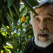 Mandarines :le troisième homme