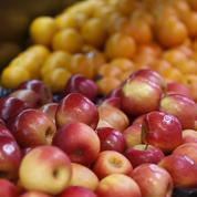 Projet Flam : une allocation pour encourager la consommation de fruits et légumes