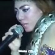 Java: une chanteuse meurt sur scène mordue par un serpent