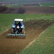 Pologne: les fermiers étrangers poussés vers la sortie