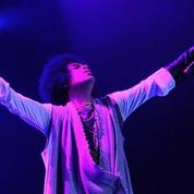 «Prince est irremplaçable»
