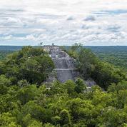 Découverte d'une cité Maya au coeur de la jungle mexicaine