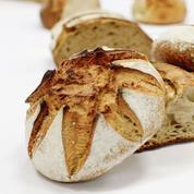 Les meilleures miches de pain de Paris