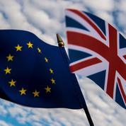 Cameron : Le Brexit est «l'option d'auto-destruction»