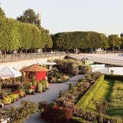 «Jardins, jardin» aux Tuileries : la cité passe au vert