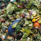 Pour une loi européenne contre le gaspillage alimentaire