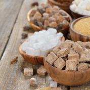 Les producteurs de sucre parient sur la remontée des cours
