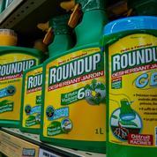 Roundup: les jardiniers doivent-ils faire des provisions ?