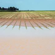 Inondations: un lourd bilan pour les agriculteurs
