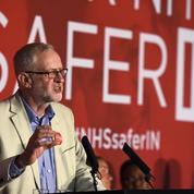 Le Labour, arbitre malgré lui du référendum