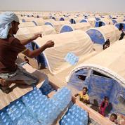 Irak: la détresse des réfugiés de Faloudja fuyant l'État islamique