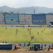 Une invasion d'abeilles interrompt un match de foot en Equateur