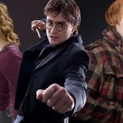 Un magasin de sorcellerie n'accepte plus les fans d'Harry Potter