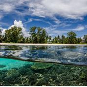 La santé des récifs coralliens réserve des surprises