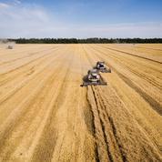 La Russie va dépasser l'UE sur le marché du blé
