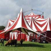 Été meurtrier pour les cirques à l'ancienne