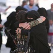 Renaud Girard : «En Syrie, le compromis se rapproche»