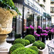 Le talent de David Bizet crépite à L'Orangerie du George V