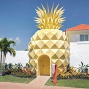 Une villa dans un… ananas