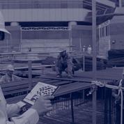 Finalcad fait entrer le numérique dans le secteur de la construction