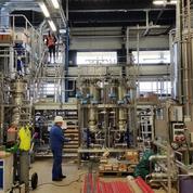 Le français Global Bioenergies pourrait produire de l'essence grâce à la forêt suédoise