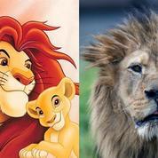 Le Roi Lion aura son remake et Disney sa nouvelle cash machine