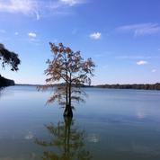 Le lac qui divise la ville la plus inégalitaire des États-Unis
