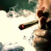 Cannabis : la réaction d'un professeur de médecine devant l'irresponsabilité politique
