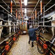 Plus de la moitié des agriculteurs devrait gagner moins de 354 euros par mois en 2016