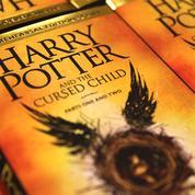 Harry Potter, à l'école du succès