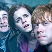 Harry Potter 8 :les critiques font un sort à l'enfant maudit