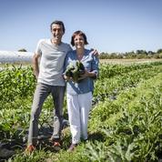 L'agriculture bio gagne du terrain presque partout en Europe