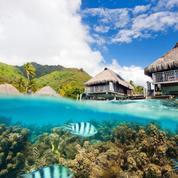 La santé d'un récif corallien mesurée au bruit qu'il émet