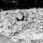 Paris : où sont passés les «aspire-feuilles» ?